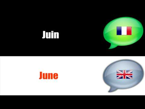 SURVIVAL FRENCH : MONTHS