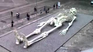 Giant Humans Of The Past - Real Skeleton Of A Giant