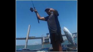 Pescando bailas en la Bahía de Cádiz, el tema de las zapatillas, fatal, más detalles en el blog...