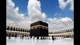سورة المزمل   |  الشيخ إدريس أبكر