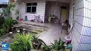 Video CCTV captures moment earthquake occurs in Yunnan, China MP3, 3GP, MP4, WEBM, AVI, FLV Februari 2019