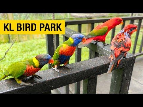A Tour of Kuala Lumpur Bird Park