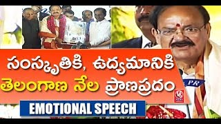 Video Vice President Venkaiah Naidu Emotional Speech At Telangana Govt Felicitation Program   V6 News MP3, 3GP, MP4, WEBM, AVI, FLV Oktober 2018