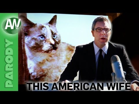this american - With the focus of a cat chasing a laser pointer,