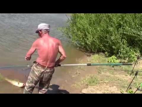 ловля леща на ахтубе в августе видео