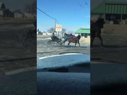 Guy Pulls Doughnuts On His Carriage When Amish Town Freezes Over