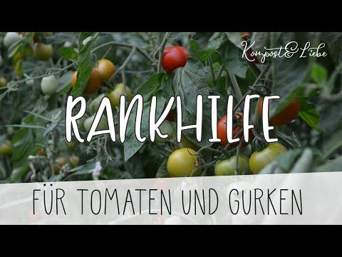 🍅 Die Beste Rankhilfe für eure Tomaten und Gurken 🍅