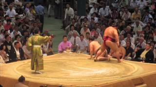 SUMO WRESTLING | Japan Trip Day 14 | Damien and Kimmi
