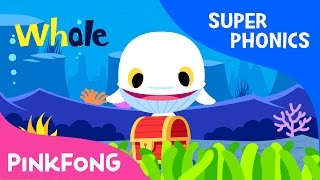 Download Lagu wh | White Whale | Super Phonics | Pinkfong Songs for Children Mp3
