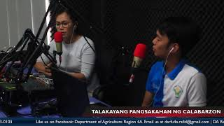 Episode 19 with Virgie Tangonan