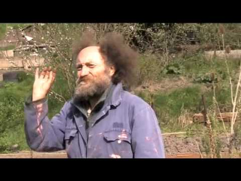 Mike Feingold's Permaculture Allotment