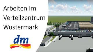 Arbeiten im neuen dm-Verteilzentrum Wustermark