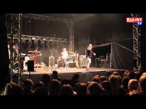 Koncert Kamila Bednarka w Sulmierzycach