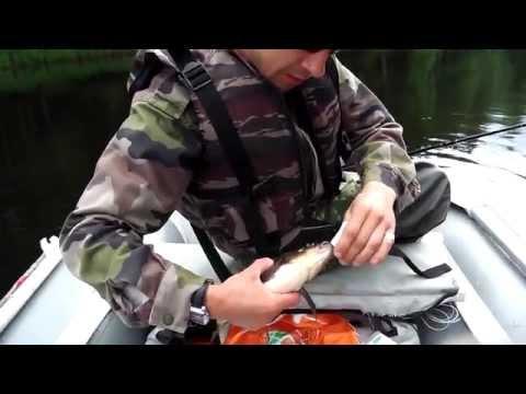 рыбалка в лесозаводске приморского