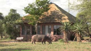 Hoedspruit South Africa  City new picture : Tshukudu Game Lodge, Hoedspruit - South Africa Travel Channel 24