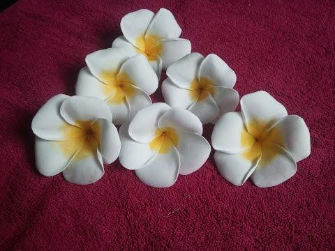 fantastici fiori realizzati in foamy