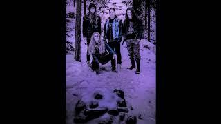 Video Murder Inc. - IV.  Druh