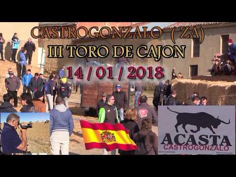 CASTROGONZALO (ZA) III TORO DE CAJON