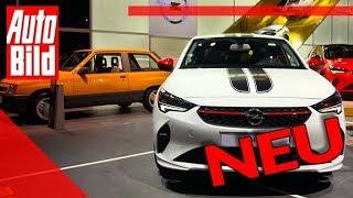Opel Corsa (2019): Auto - Neuvorstellung - IAA - PSA - Infos by Auto Bild