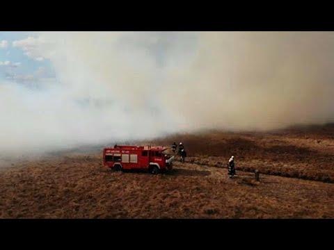 Forstexperten: Sorge um frühe Waldbrände in Europa (Ni ...