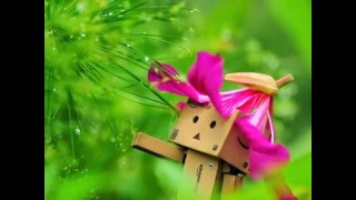 Corrinne May - The Happy Birthday Song (Untukmu Temanku)