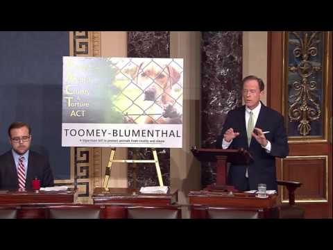 Toomey: Protect All Animals from Abuse