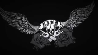 R.I.N.D. Album Teaser