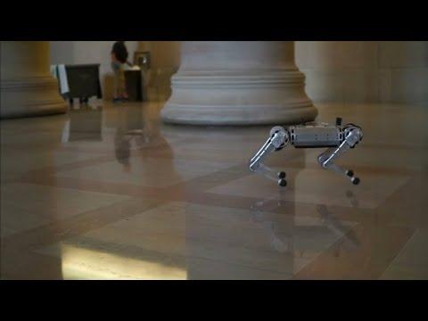 Roboter zeigt, was er kann: Rennen, hüpfen, Salto