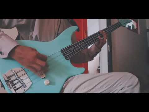 Killing Me Inside - Suicide Phenomena (Bass Cover)