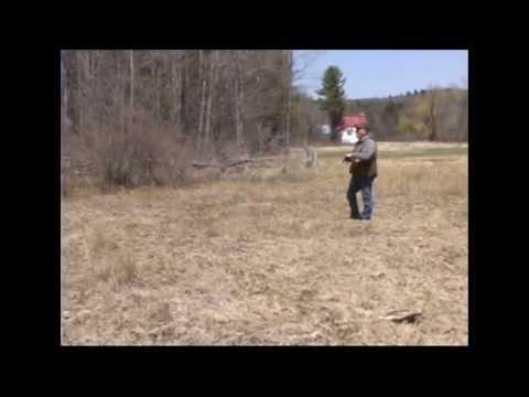 gundog traning technique
