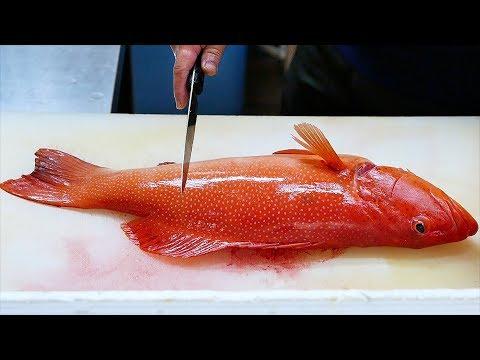 Japanese Food - RED GROUPER Steamed Fish Sashimi Okinawa Seafood Japan - Thời lượng: 41 phút.