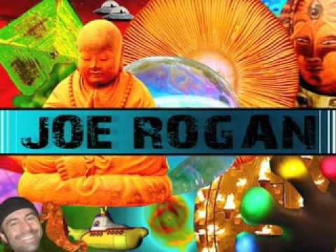 Joe Rogan ~ DMT Changes Everything