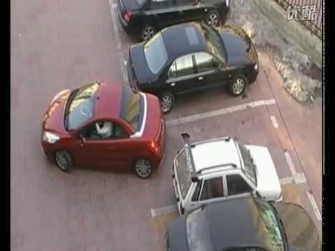 Le rubbano il parcheggio ma non rinuncia