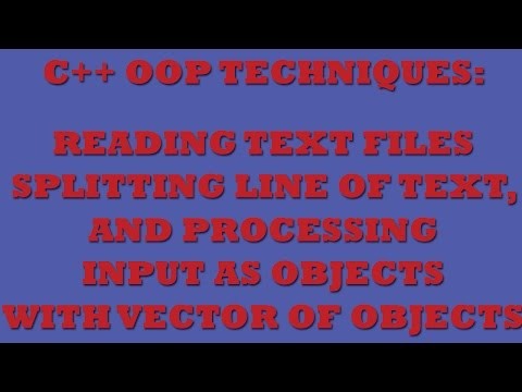 C++ Programming Challenge: Working with Text Files and C++ Vector Of Objects