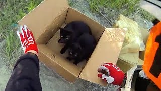 Video BIKER FINDS KITTENS! Random Acts of Kindness 2017 - Bikers Are Awesome - [Ep.#36] MP3, 3GP, MP4, WEBM, AVI, FLV Agustus 2017