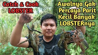 Video Initially underestimated !!! Fishing here can get a lot of LOBSTER MP3, 3GP, MP4, WEBM, AVI, FLV November 2018