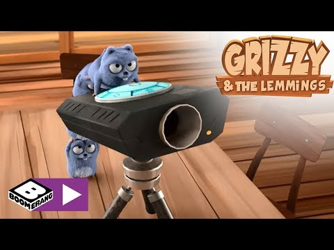 Grizzy and the Lemmings | Gravity | Boomerang
