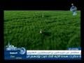 دعاء العرش - ياسر أبو عمار