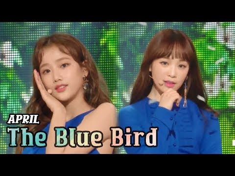 [Comeback Stage] APRIL - The Blue Bird, 에이프릴 - 파랑새 Show Music core 20180317 (видео)