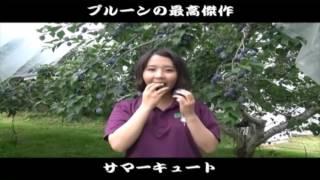 プルーン日本代表は佐久穂町!?