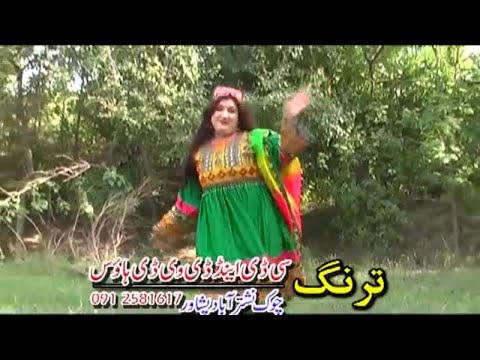 Rostoon Walesh Mah - Volume 16 - Pashto Stage,movie Song,with Dance