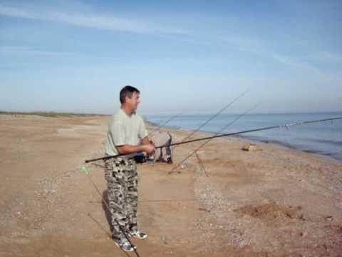где ловить пеленгас на азовском море
