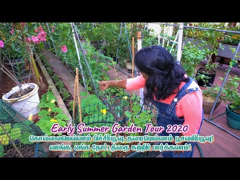 Complete Video on Garden Tour 2020 | All Episodes Combined
