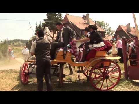 Esküvőn megvadult lovak