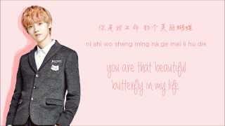Download Lagu EXO-M - Don't Go (蝴蝶少女) (Color Coded Chinese/PinYin/Eng Lyrics) Mp3