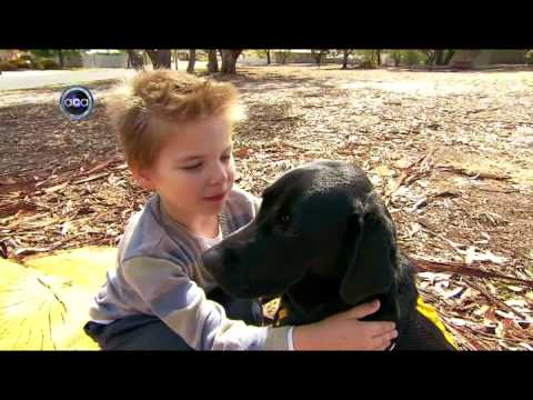 Autism Assistance Dogs – ACA Adelaide, Channel 9