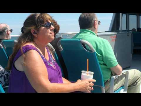 INSIGHT 2015 Summer Outing