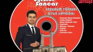 Oğuzhan Sancar - DELİ KIZ SİNİN GELİYOR