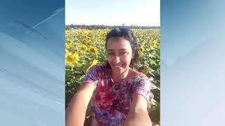 Produtor de soja investe em plantio de girassol que se torna um espetáculo em Garça