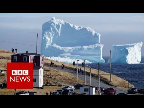 A Hug Iceberg Majestically Floats Down Iceberg Alley Near Ferryland
